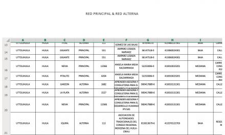 RED PRINCIPAL & RED ALTERNA TOLIMA